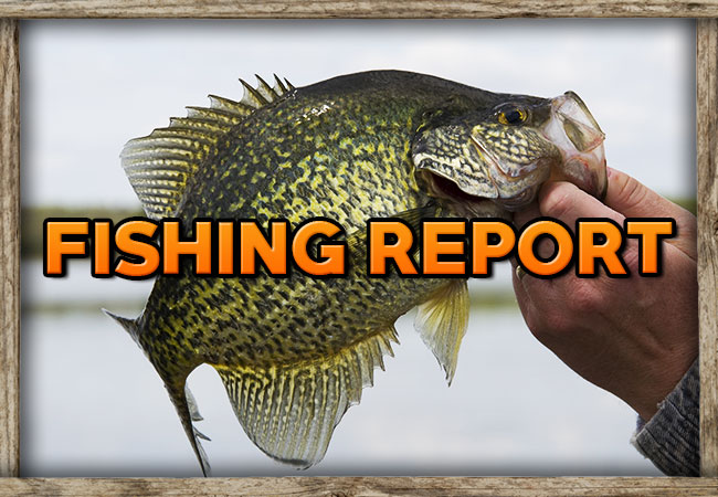 Weiss Lake Crappie Guides Fishing Report