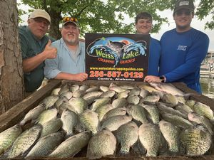 Caught 2-29-21 Big stringer of Weiss Lake crappie!
